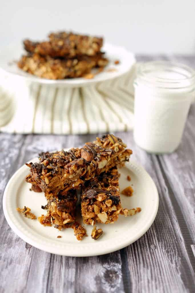 Paleo Fruit and Nut Granola Bars