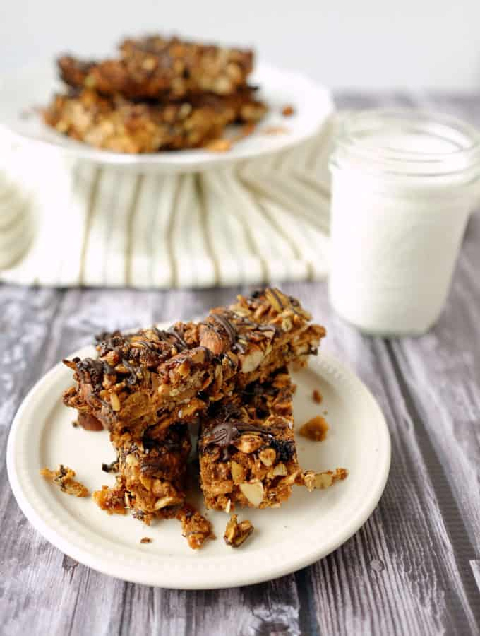 Paleo Fruit and Nut Granola Bars (GF, Grain Free + Refined Sugar Free)